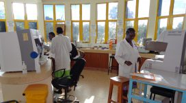 lab_workers