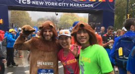 s4a_nycm_2017_lion1